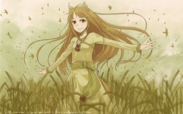 spice and wolf hentai manga wallpaper data wolf spice spiceandwolf