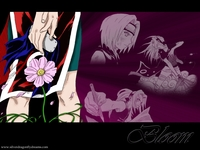 naruto & sakura hentai wallpapers naruto hentai sakura flower wallpaper