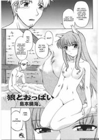 spice and wolf hentai mangasimg cdb fdfe dbd manga spice wolf smalt leather