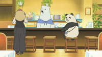 tiny show fairy sugar hentai shirokuma cafe large
