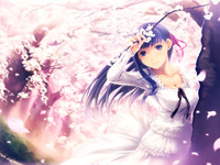 fate/stay night hentai cherry blossoms fate stay night sakura hentai wallpaper