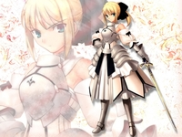fate/stay night hentai albums userpics hentai saber fate stay night lily sets