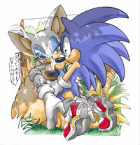 sonic the hedgehog  hentai erosuke rouge bat sonic team hedgehog entry