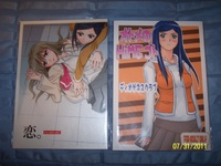 anime hentai doujinshi pictur anime manga collectionbox sets volumes merch