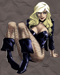 black canary hentai lusciousnet black canary looks invi pictures album screaming ecstasy lesbian