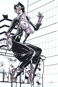 catwoman hentai galleries albums well drawn art roadkill catthouse batman catwoman selina kyle hentai categorized cartoons erotic