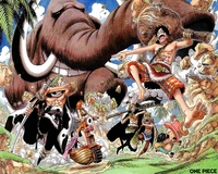 one piece hentai chopper thumbnails detail one piece anime nico robin roronoa zoro chopper monkey luffy nami sanji wall wallpaper