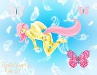 rule 63 hentai hentaisweetie pictures user fluttershy rule