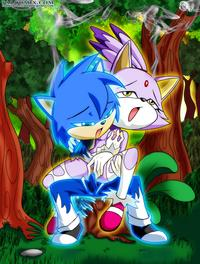 sonic and blaze hentai blaze cat palcomix sonic team
