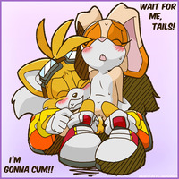 sonic and tails hentai dfed bac cream rabbit emerald physics sonic team tails