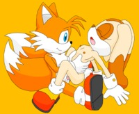 sonic hentai sonic hedgehog furries pictures album