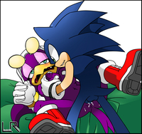 sonic riders hentai leatherruffian sonic riders team hedgehog wave swallow