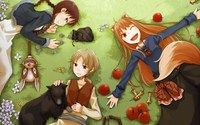 spice and wolf hentai pics data wallpaper spiceandwolf spice wolf