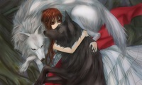 vampire knight hentai vampire knight yuuki cross girl wolves arms wallpaper kiryu zero