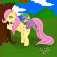 my little pony flash hentai fluttershy friendship magic little pony spike porn galery hentai cartoon search